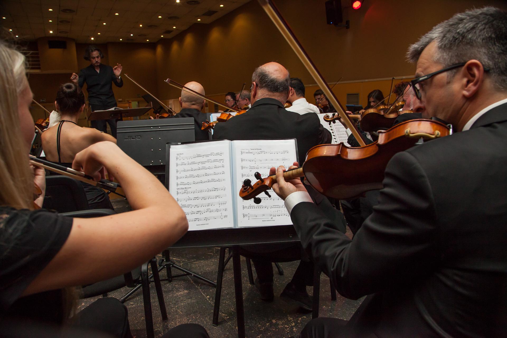 Sección violín